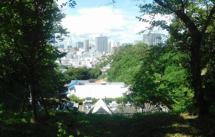 「丘から見下ろす都会」(2020・8・27)1.jpg