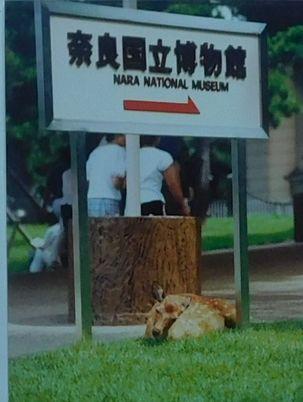 「体験4最期のツアー」1(198886).jpg